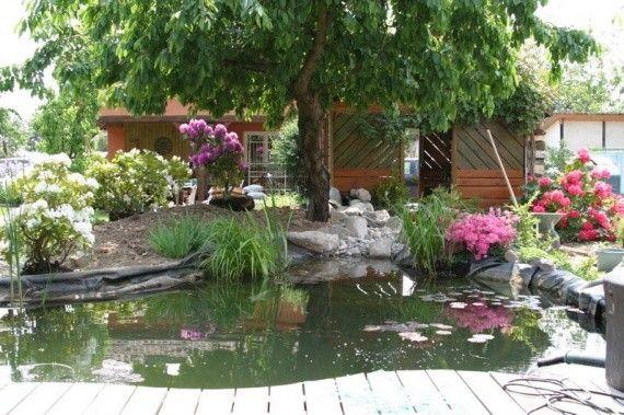 Paysages divers page 10 - Bassin jardin japonais ...